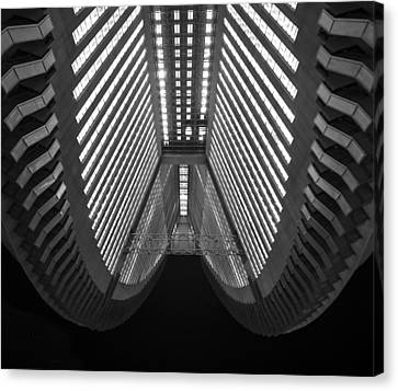Cleavage Canvas Print by Aaron Bedell