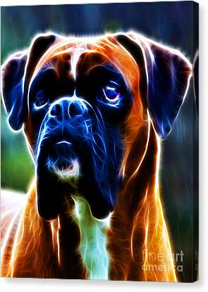 The Boxer - Electric Canvas Print by Wingsdomain Art and Photography