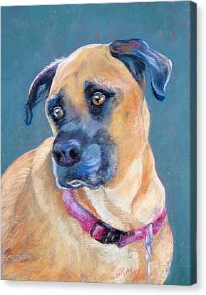 Canvas Print featuring the pastel The Boxer by Julie Maas