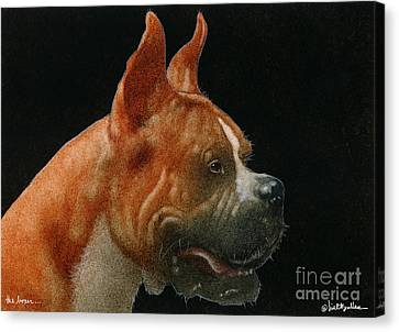 The Boxer... Canvas Print by Will Bullas