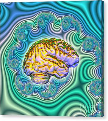 The Brain Canvas Print by Dennis D. Potokar