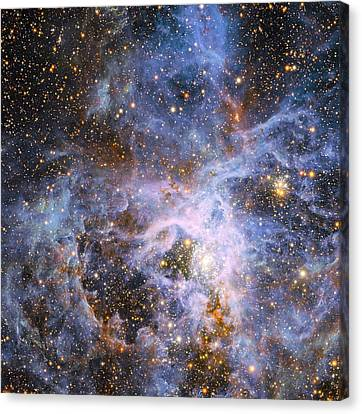 Wolf Pics Canvas Print - The Brilliant Star Vfts 682 In The Lmc by Nasa