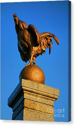 The Bronze Rooster Canvas Print by Olivier Le Queinec