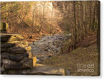 The Brook Canvas Print by William Norton