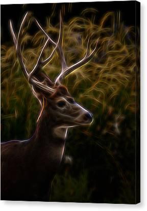 The Buck 2 Digital Art Canvas Print