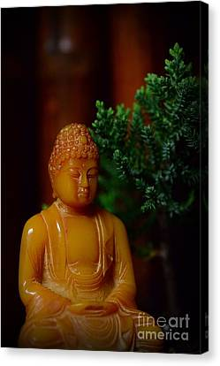 The Buddha Knows Canvas Print by Paul Ward