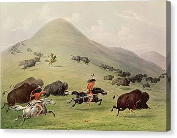 The Buffalo Hunt Canvas Print by George Catlin