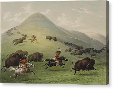 The Horse Canvas Print - The Buffalo Hunt by George Catlin