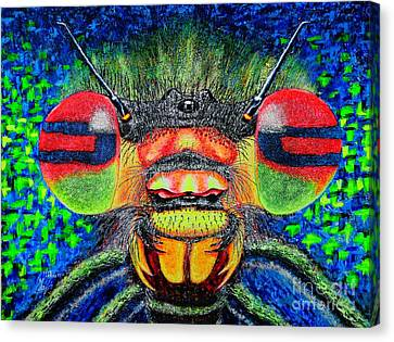 The Bug Canvas Print by Viktor Lazarev