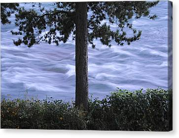 The Bulkley River Canvas Print by Mary Lee Dereske