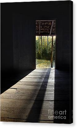 Who Left The Door Open Canvas Print by Michael Eingle