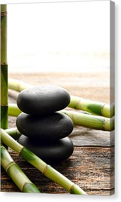 The Cairn And The Bamboo Canvas Print by Olivier Le Queinec
