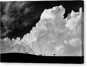 The Calm Before The Storm Canvas Print by Gloria Salgado Gispert