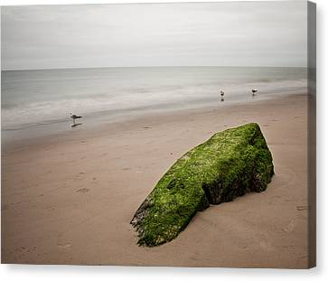 The Calm Canvas Print by Michael Murphy