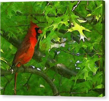 The Cardinal 2 Painterly Canvas Print by Ernie Echols