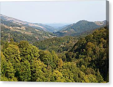 The Carpathian Mountains West Of Baia Canvas Print by Martin Zwick