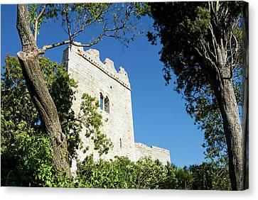 The Castle, Campiglia Marittima Canvas Print