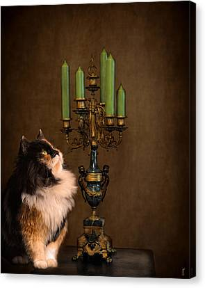 The Cat And The Candelabra Canvas Print by Jai Johnson