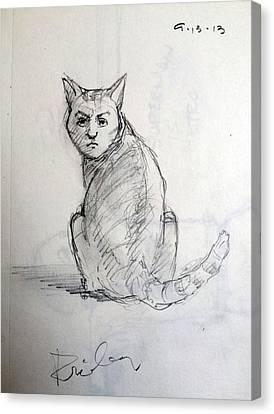 Bizarre Canvas Print - The Cat by H James Hoff