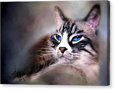 The Cat Canvas Print by Robert Smith