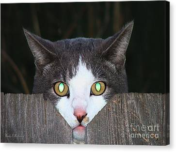 Canvas Print featuring the photograph The Cat's Meow by Wendy McKennon