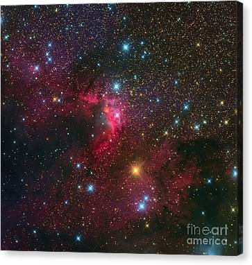 155 Canvas Print - The Cave Nebula by Michael Miller