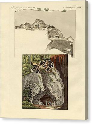 The Cave Of Gaillenreuth Canvas Print by Splendid Art Prints