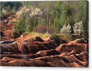 Canvas Print featuring the photograph The Cheltenham Badlands by Gary Hall