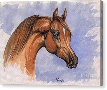 The Chestnut Arabian Horse 1 Canvas Print by Angel  Tarantella