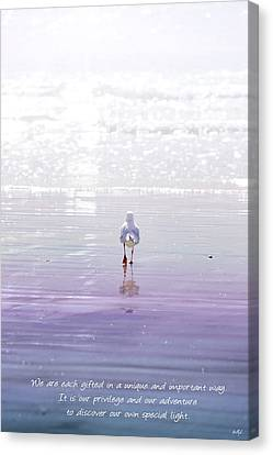 Canvas Print featuring the photograph The Chosen One by Holly Kempe