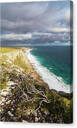 The Cliff Line Near Remarkable Rocks Canvas Print by Martin Zwick