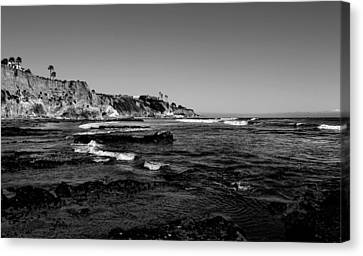 The Cliffs Of Pismo Beach Bw Canvas Print