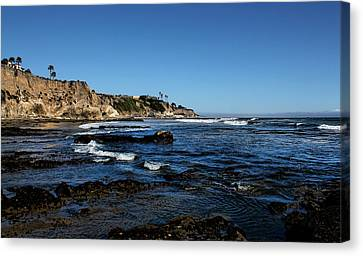 The Cliffs Of Pismo Beach Canvas Print by Judy Vincent