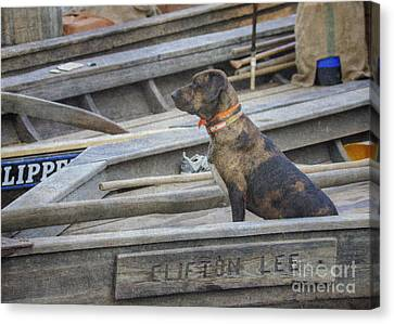Canvas Print featuring the photograph The Clifton Lee 2 by Pete Hellmann
