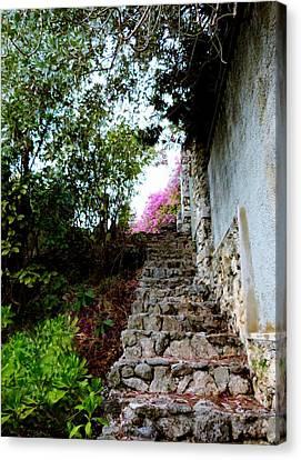 The Climb Canvas Print by Amar Sheow