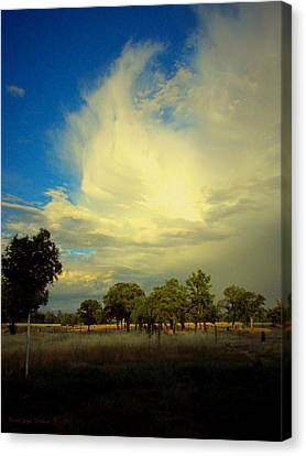 The Cloud Canvas Print by Joyce Dickens