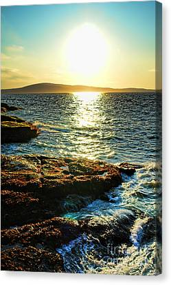 The Coast Of Maine Canvas Print by Olivier Le Queinec