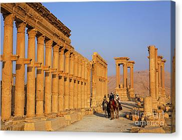 The Colonnaded Street Palmyra Syria Canvas Print by Robert Preston