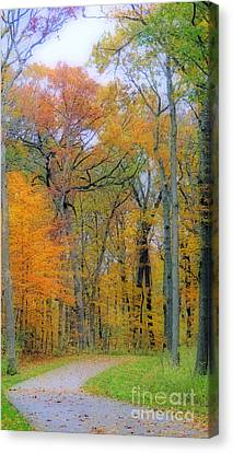 The Colors Of Autumn Canvas Print by Kay Novy