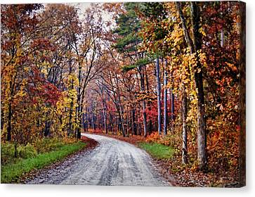 The Colors Of Fall Canvas Print by Cricket Hackmann