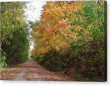 Canvas Print featuring the photograph The Colors Of Fall by Ramona Whiteaker
