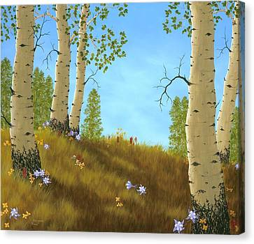 The Colors Of Nature Canvas Print by Rick Bainbridge
