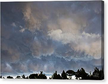 The Coming Storm Canvas Print by Phil Mancuso