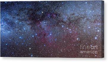 The Constellations Of Puppis And Vela Canvas Print