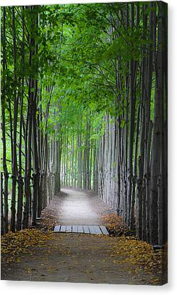 The Corridor Canvas Print