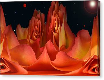 The Creation Of Rose. Canvas Print