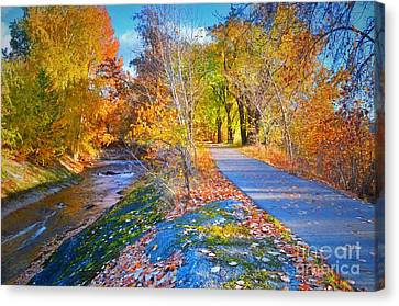 The Creek And The Path Canvas Print by Tara Turner