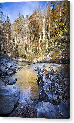 The Creek Canvas Print by Debra and Dave Vanderlaan