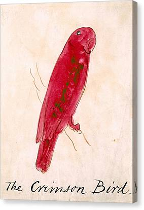 The Crimson Bird Canvas Print