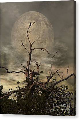 Night Canvas Print - The Crow Tree by Yoursbyshores Isabella Shores